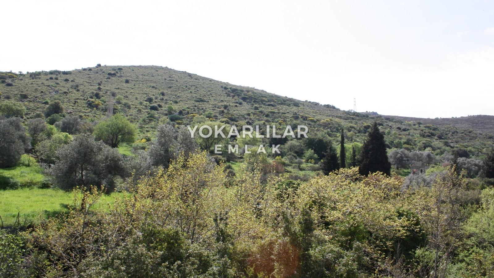 Yokarlılar Emlak - Bodrum/Satılık-Arsa/bodrum-derekoy'de-satilik-kelepir--ciftlik-arazisi